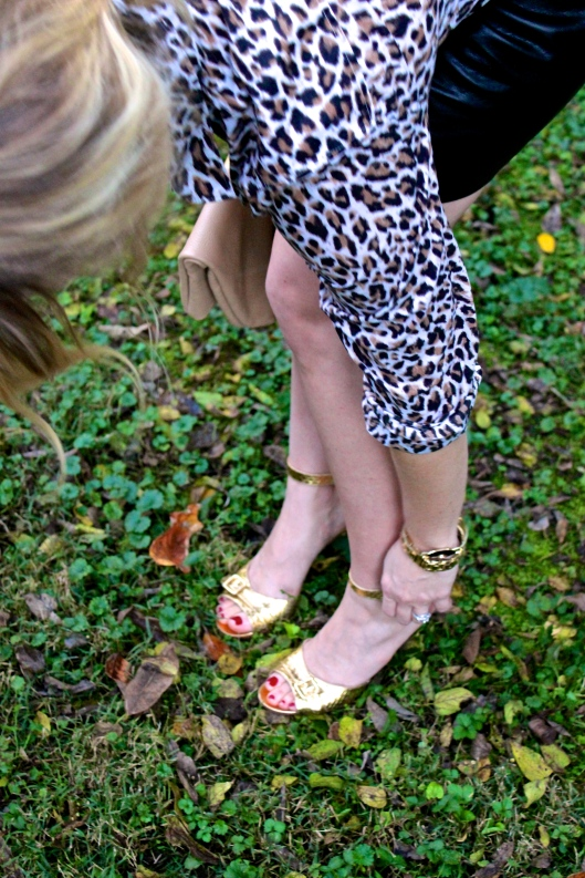 Carrie M Leopard 4