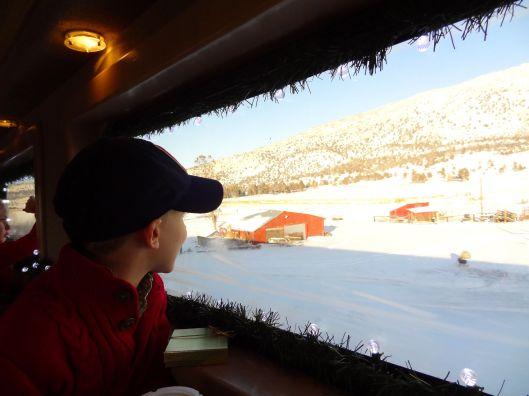 Christmas Train 10