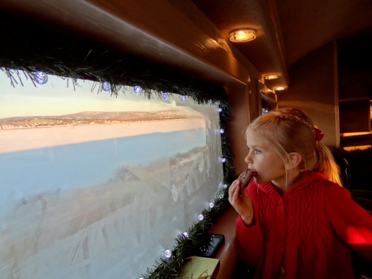 Christmas Train 17