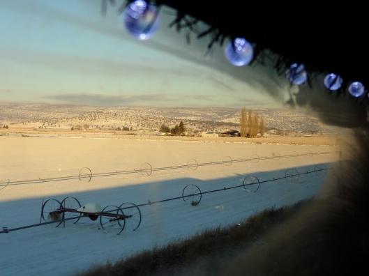 Christmas Train 23