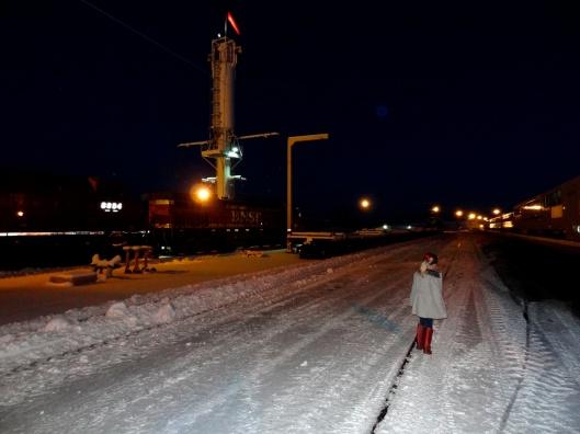 Christmas Train 28